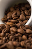 Coffee Beans in cup. Roasted brown coffee beans on white background in small espresso coffee cup royalty free stock images