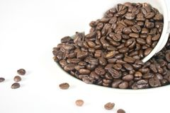 Coffee Beans in Cup and Saucer Stock Images