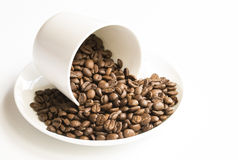 Coffee Beans in Cup and Saucer Stock Image