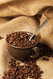 Coffee beans in a cup with spoon Stock Photos