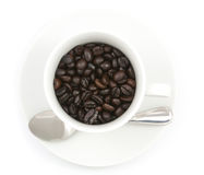 Coffee beans in the cup. On white background,  file includes a excellent clipping path Stock Photos