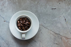 Coffee Beans in a Cup. White Coffee Cup Filled With Brown Coffee Beans Royalty Free Stock Photos