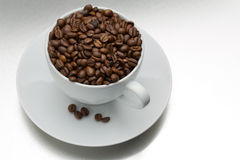 Coffee beans with cup Stock Images