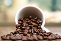 Coffee beans cup by window Stock Photos