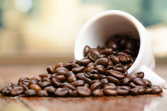 Coffee beans cup by window Royalty Free Stock Image