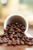 Coffee beans cup by window Royalty Free Stock Images