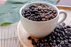 Coffee beans cup on wood royalty free stock photos