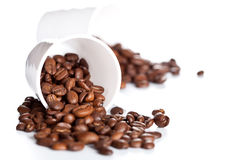 Coffee beans in a cups Stock Photography