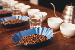 Coffee beans and cups in a row preparation for tasting. Containers with coffee beans, cups and water glasses organised in neat rows with a stainless steel kettle Stock Photography