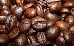 Coffee beans. Detailed look on coffee beans stock images