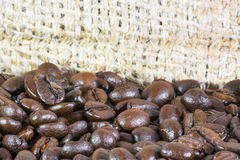 Coffee beans details Stock Photography