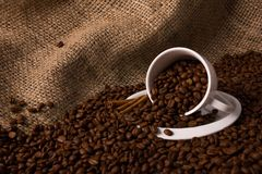 Coffee beans. In different shapes and compositions Stock Images