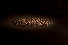 Coffee beans in direct light. Coffee beans on brown background Stock Photography