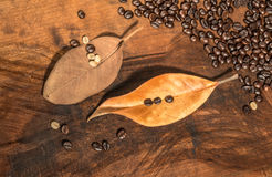Coffee beans with dry leaves of magnolia Stock Photo
