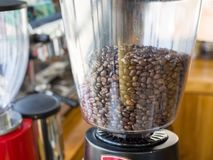 Coffee beans in the electric coffee grinder stock photos