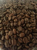 Coffee beans. Beans for espresso arabiga type Stock Photos