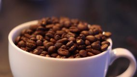 Coffee beans fall. Into the cup stock video footage