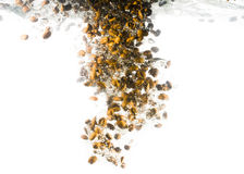 Coffee beans fall deeply under water Royalty Free Stock Photography