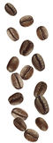 Coffee beans falling. Coffee beans shot as if falling from above Stock Photography