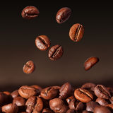 Coffee beans falling - closeup. Fresh roasted coffee beans falling on dark background Stock Image