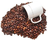 Coffee beans falling from a coffee cup Stock Photos