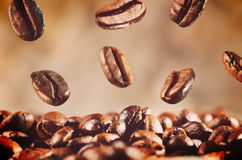 Coffee beans is falling down Stock Images
