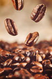 Coffee beans is falling down Stock Image