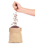 Coffee beans falling from the hand into the bag. 