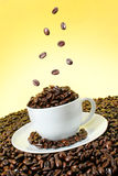 Coffee beans falling over a white cup stock photos