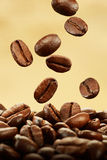 Coffee beans falling Stock Photography