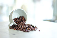 Coffee beans falling from a white cup. A white cup resting on a marble coffee table with a scattering of roasted beans Stock Photos