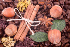 Coffee beans, Filbert and cinnamon Royalty Free Stock Photos