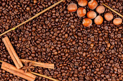 Coffee beans and filberts. Closeup of coffee beans and filberts - top view Royalty Free Stock Image