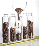Coffee beans in five bottles Royalty Free Stock Photo