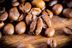 Coffee beans. Coffee beans with focus on one Stock Image