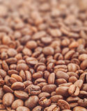 Coffee beans with focus on one Stock Photo