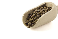 Coffee beans in the food shovel. On isolated background Stock Photo