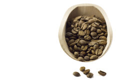 Coffee beans in the food shovel. On isolated background Stock Image