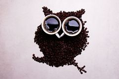 Coffee beans forming an owl, good morning and stay fit. Coffee beans forming an owl, good morning with a hot cup of coffee and stay fit Royalty Free Stock Photo