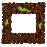 Coffee beans frame vector illustration Royalty Free Stock Images