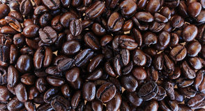 Coffee Beans. Fresh coffee beans Stock Image