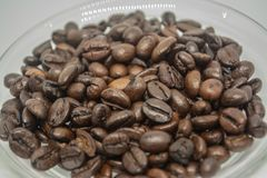 Coffee beans for fresh coffee both hot and cold stock photography