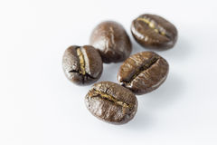 Coffee beans. Fresh roasted coffee beans with the heat Stock Photography