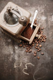Coffee beans and freshly ground coffee Royalty Free Stock Image