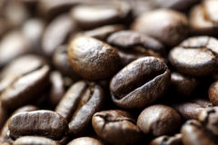 Coffee Beans Macro Royalty Free Stock Photography