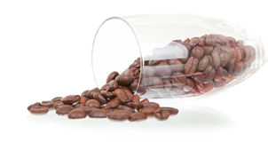 Coffee beans in a glass. On white Stock Photography