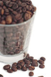 Coffee beans with glass Stock Images