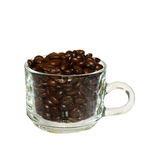 Coffee beans in glass  coffee cup Royalty Free Stock Image