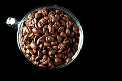 Coffee beans in a glass cup Stock Image