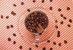 Coffee beans in a glass cup with cinnamon Royalty Free Stock Image